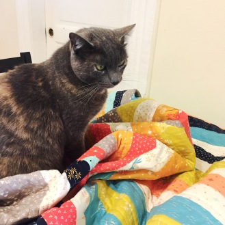 lucy-helping-me-quilt-2