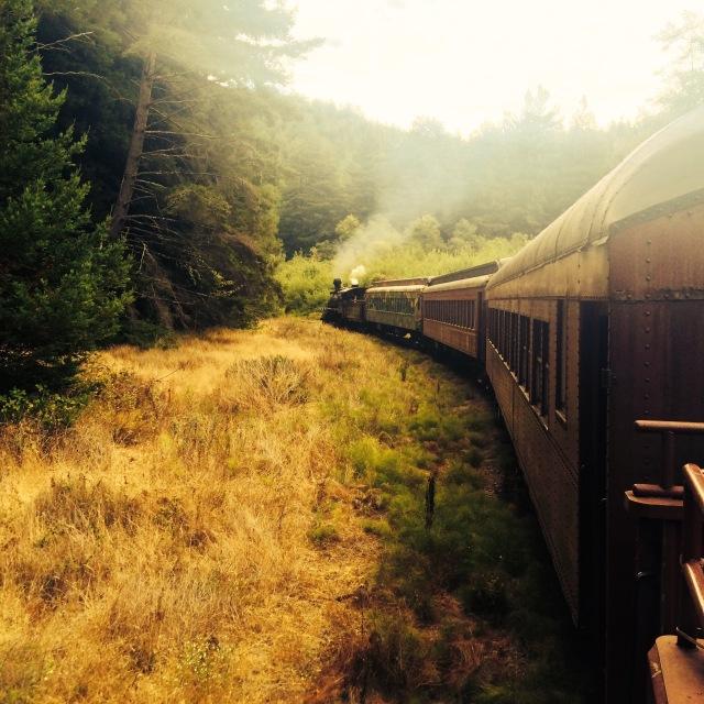 skunk train perspective